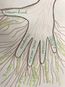 Art Response with Roots Grow Together 1